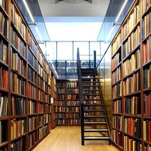 Библиотеки Чесмы
